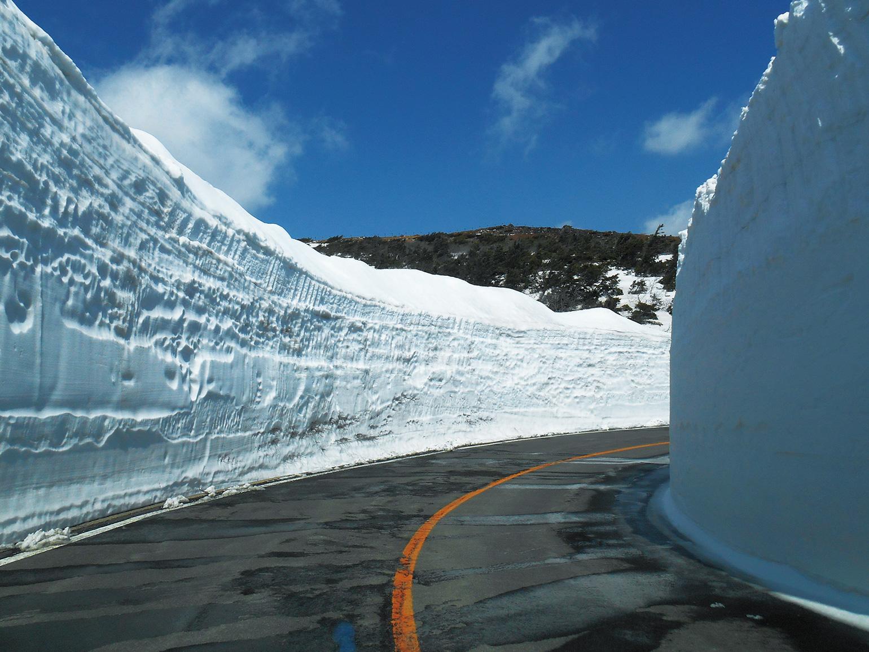 「蔵王ハイライン」がいよいよ4/24(金)開通!「雪の回廊」を行くドライブは今だけの絶景!気分転換にぜひ!
